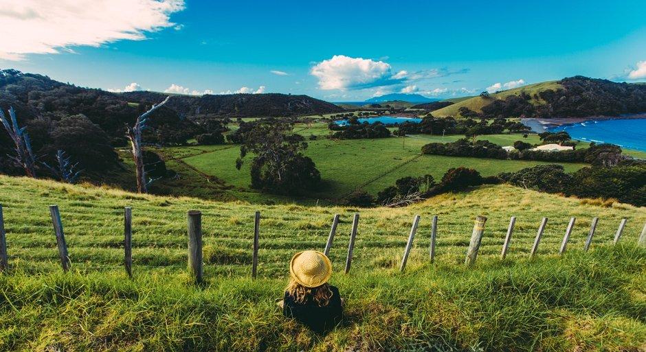Adventures in Auckland, New Zealand (8)