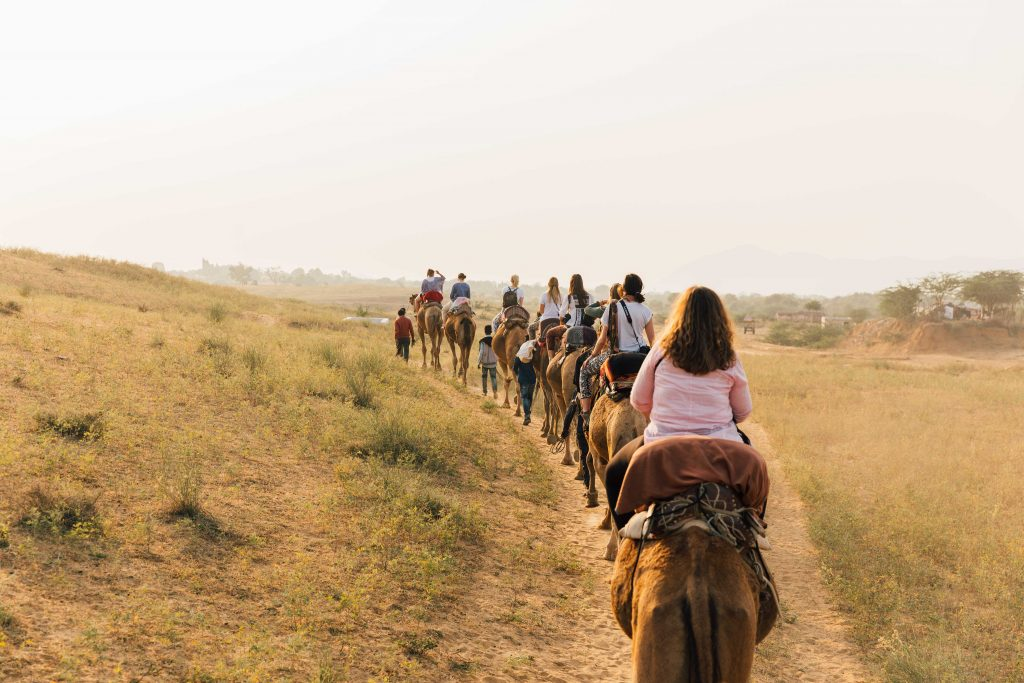 'Riding Camels through Desert in Pushkar'- The best way to travel India: solo or group tour